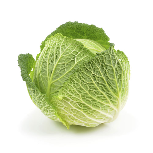 product-cabbage